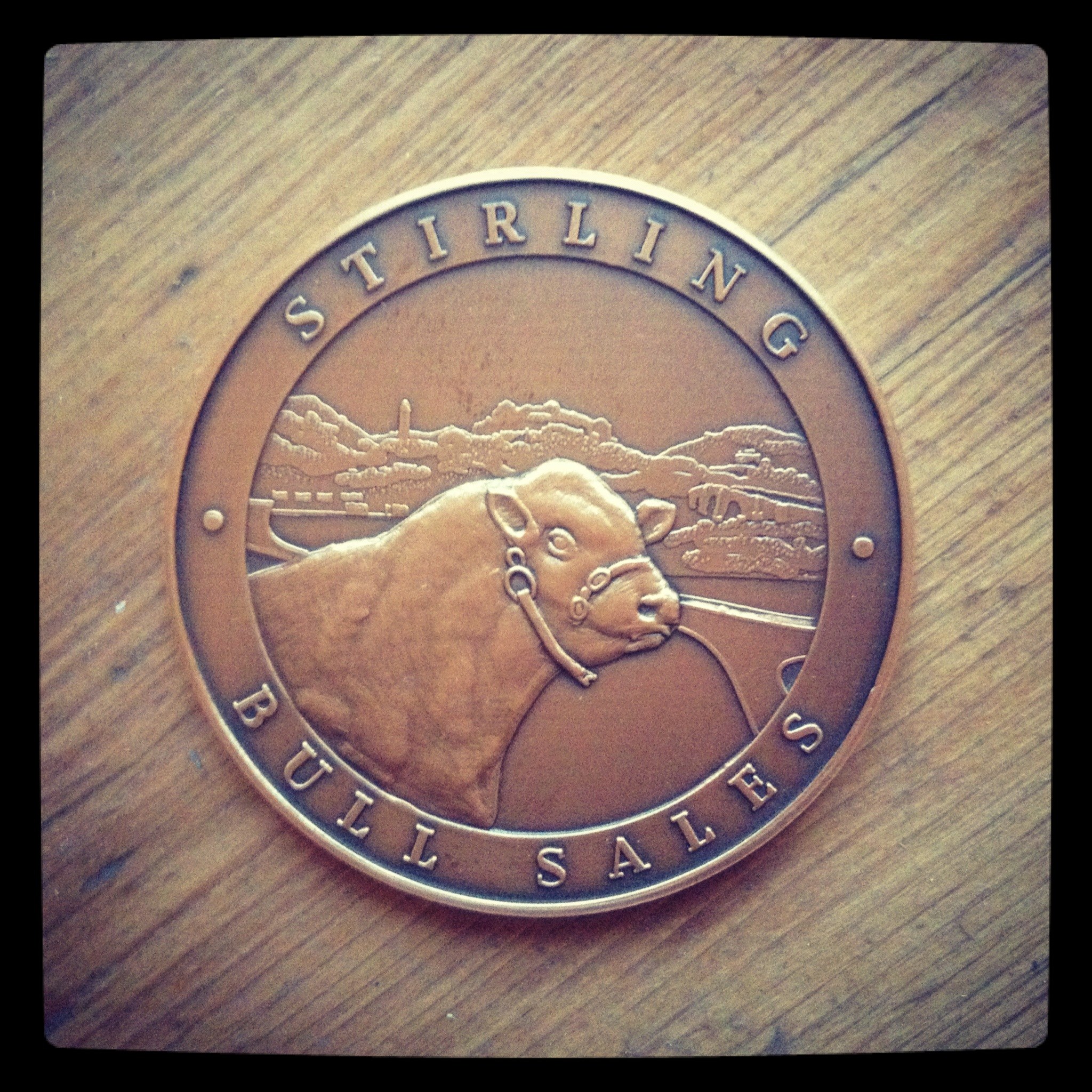 Stirling Bull Sales Medal