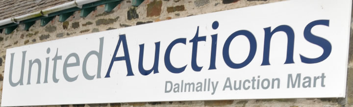 4-Auctions_Dalmally_sign